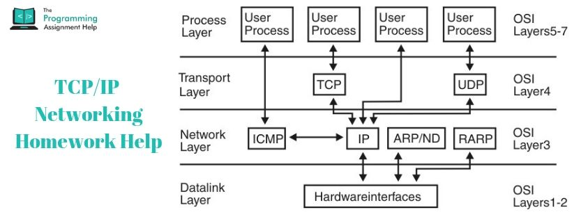 TCP/IP Networking Homework Help
